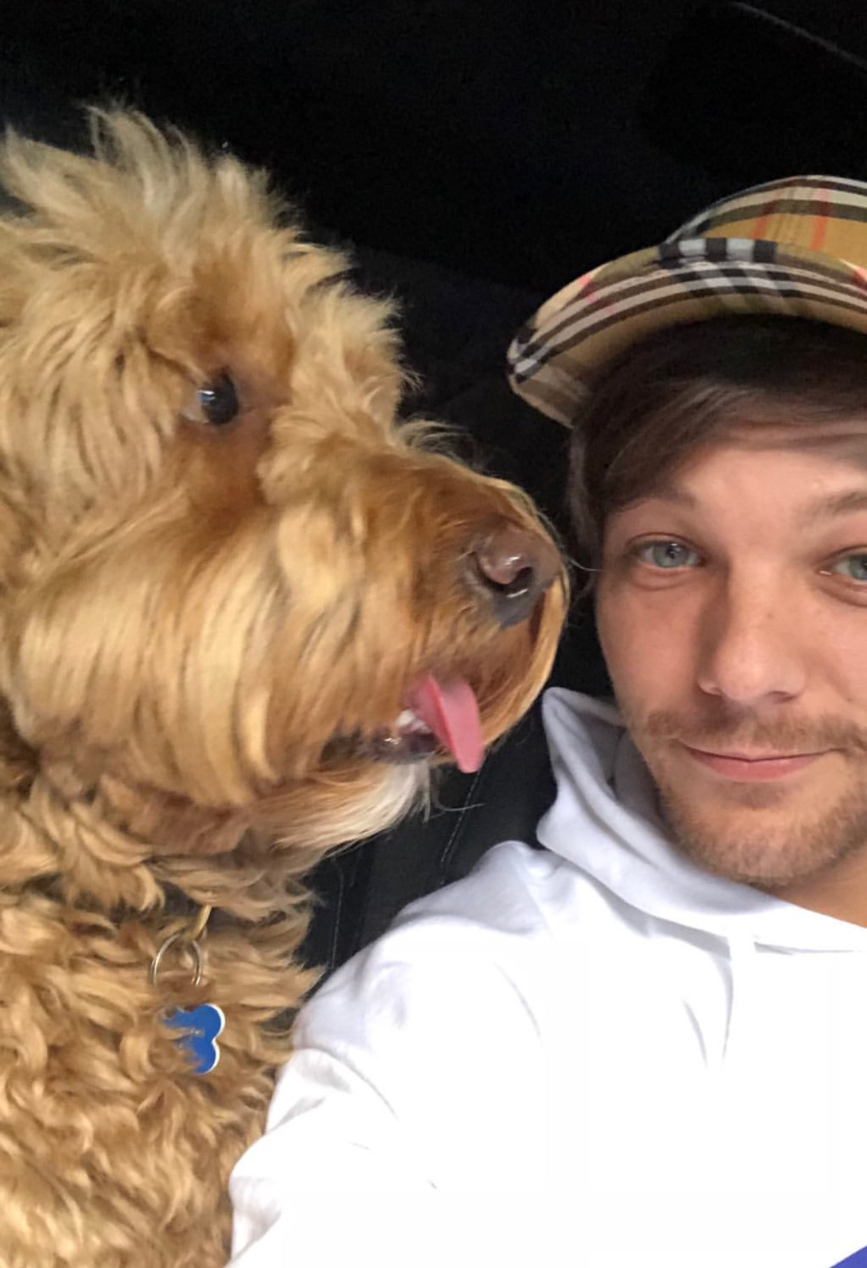 I hope @Louis_Tomlinson is having the best week ever �� https://t.co/OdQY6tot6O