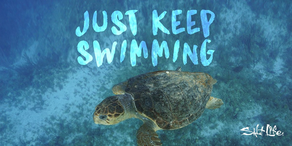 Just Keep #Swimming 🐢  #LiveSalty https:...