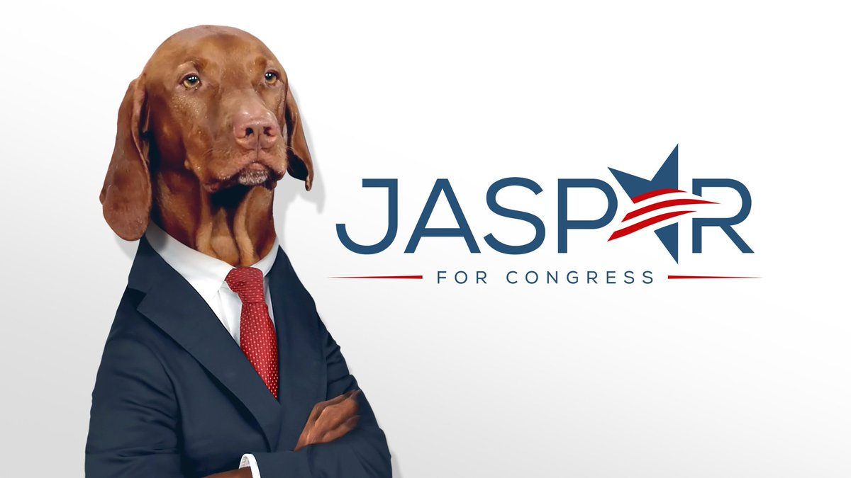 #IllTellYouWhat Coming to a congressional district near you. @DanaPerino @ChrisStirewalt
