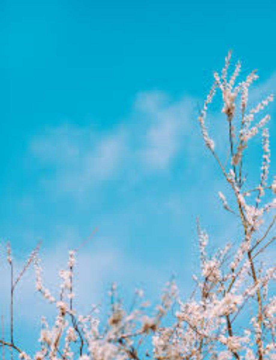 Era uno di quei giorni di marzo in cui il sole splende caldo ed il vento soffia freddo: quando è estate nella luce e inverno nell'ombra.(Charles Dickens)#MarzoCon @CasaLettori  - Ukustom