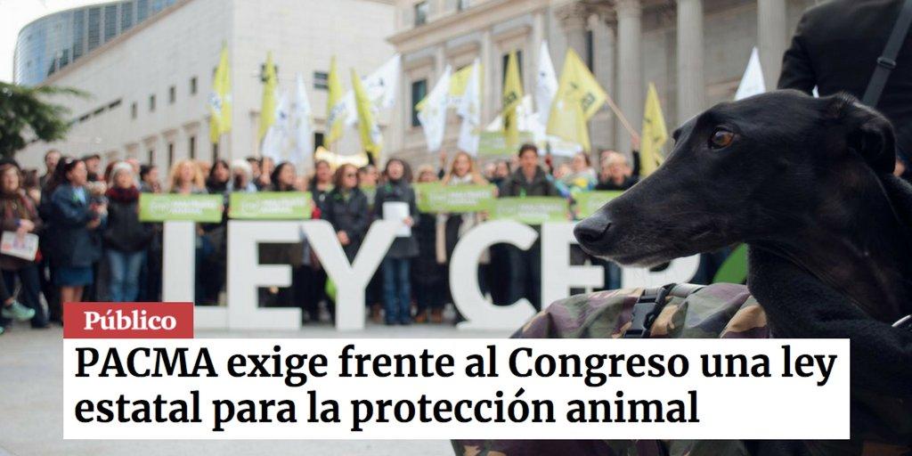Ahora, en portada de @publico_es ✊ https...