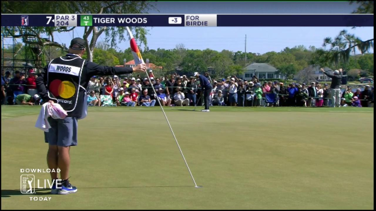 WOW!!! ��  @TigerWoods from 71 feet ...  #QuickHits https://t.co/xO7XWJVv9p