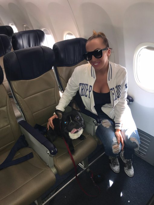 I dont belong in the overhead bin.... I sit in the seat right next to my mommy ❤️🐶 #PetsFirst https://t