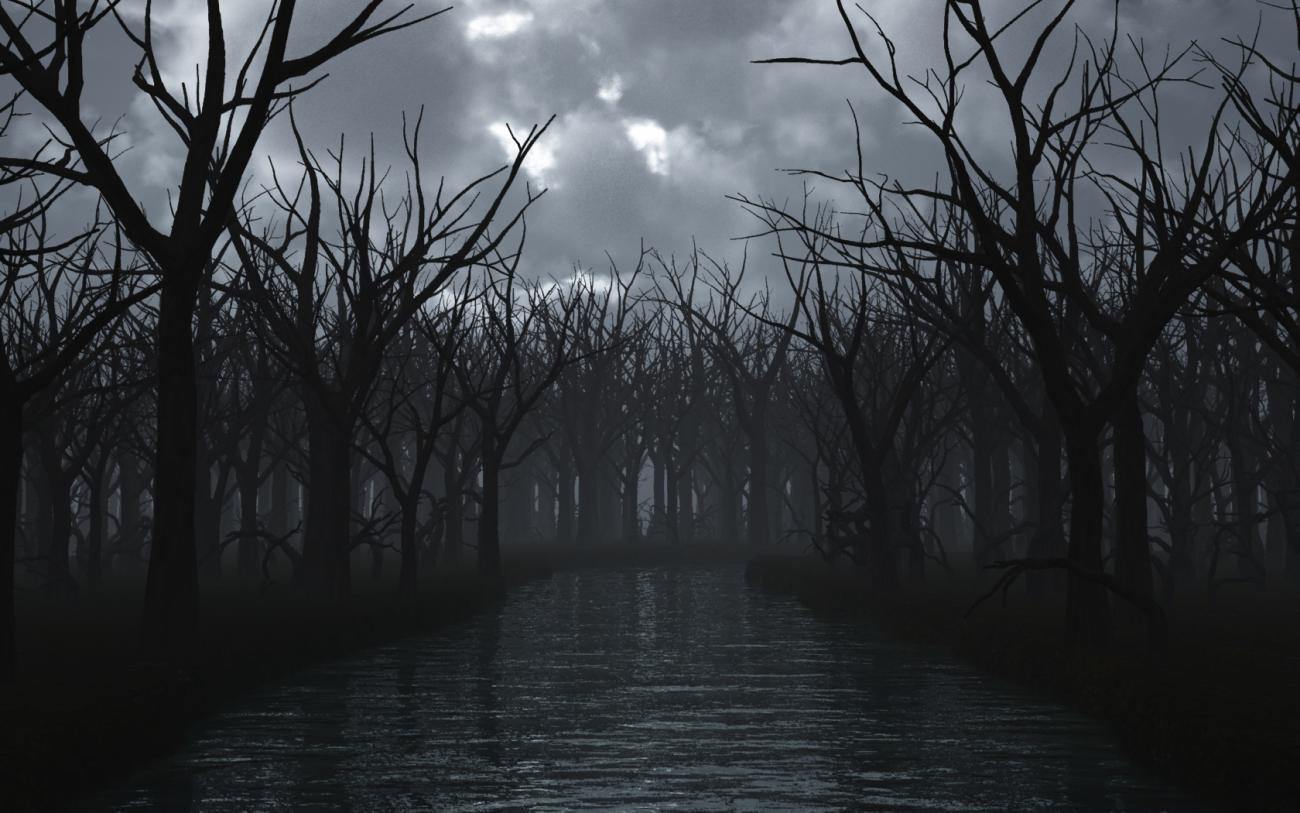 убедимся картинки мрачные речек в ночи потому, что