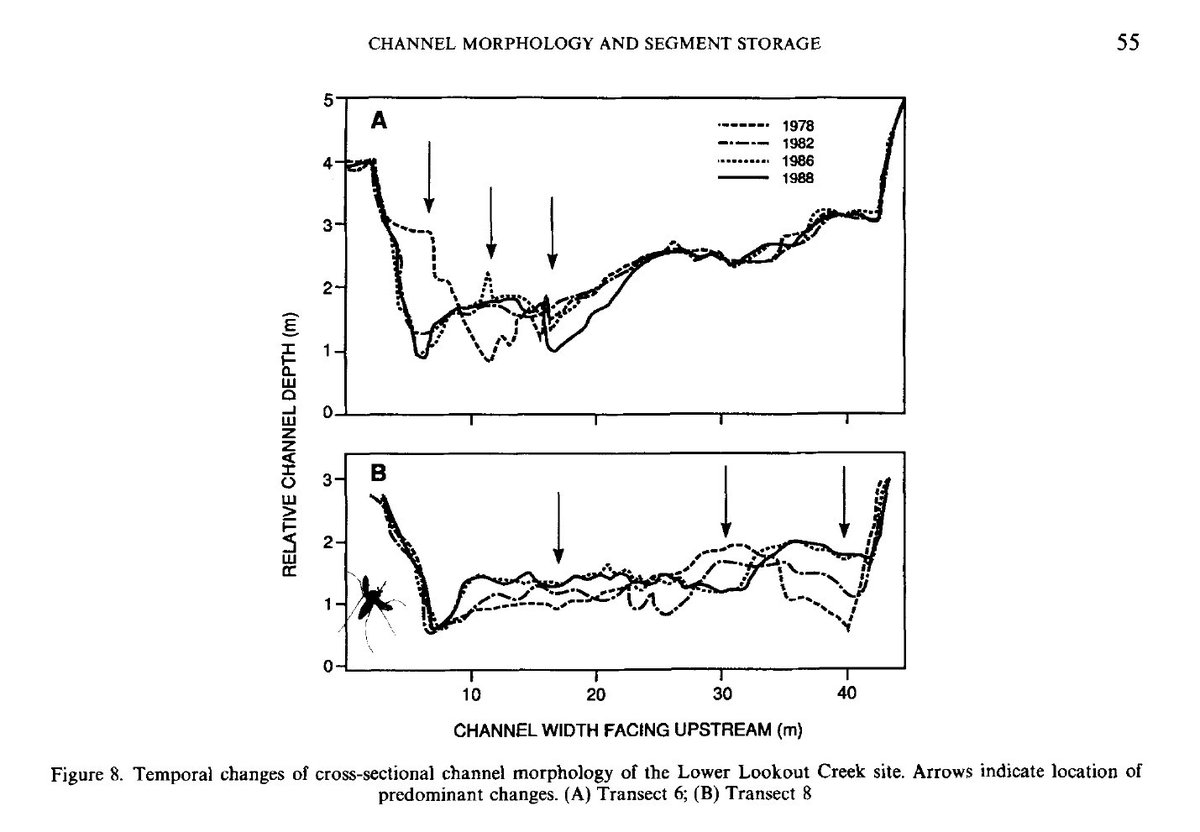 Momentarily pausing my Twitter hiatus to post Figure 8 from Nakamura et al 1993 which features a squished mosquito on the official Wiley journal page #sciencetwitter