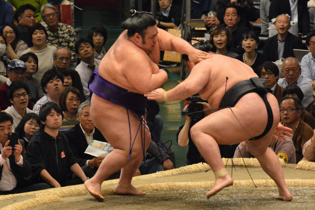 今日 の 相撲 取組 結果