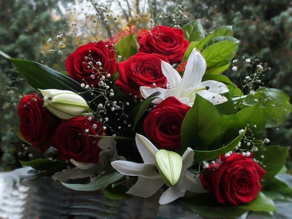 все красивые цветы картинки розы белые черные красные оранжевые давних времен