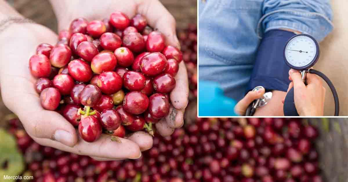 How to Grow Cherries https://t.co/elODqUnhfY #natural #healthnews