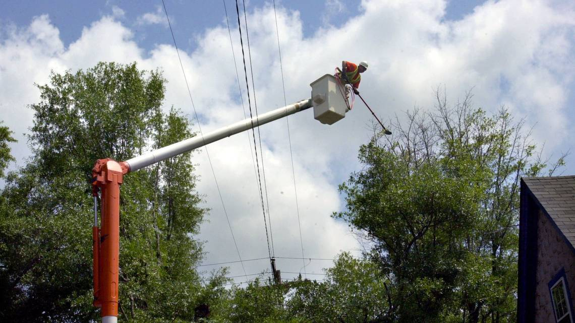 SCE&G sets tree trimming schedule for Columbia area https://t.co/dkz0qnAtpy