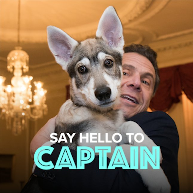 Happy #NationalPuppyDay from Captain and...