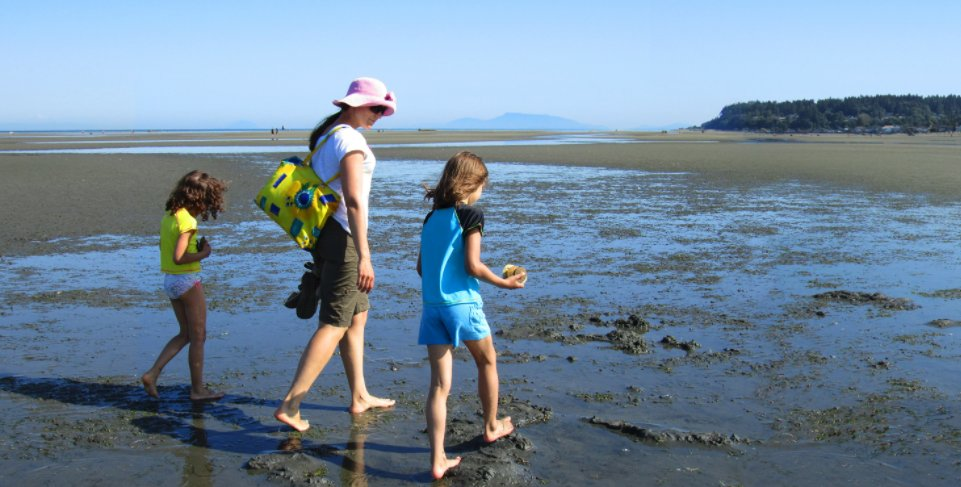 Fun Things To Do With Your Friends And Family Like Visiting Centennial Beach The Area Has Beautiful Sand Beaches For You Stroll Along Water