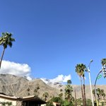 Image for the Tweet beginning: Oh Palm Springs... we never