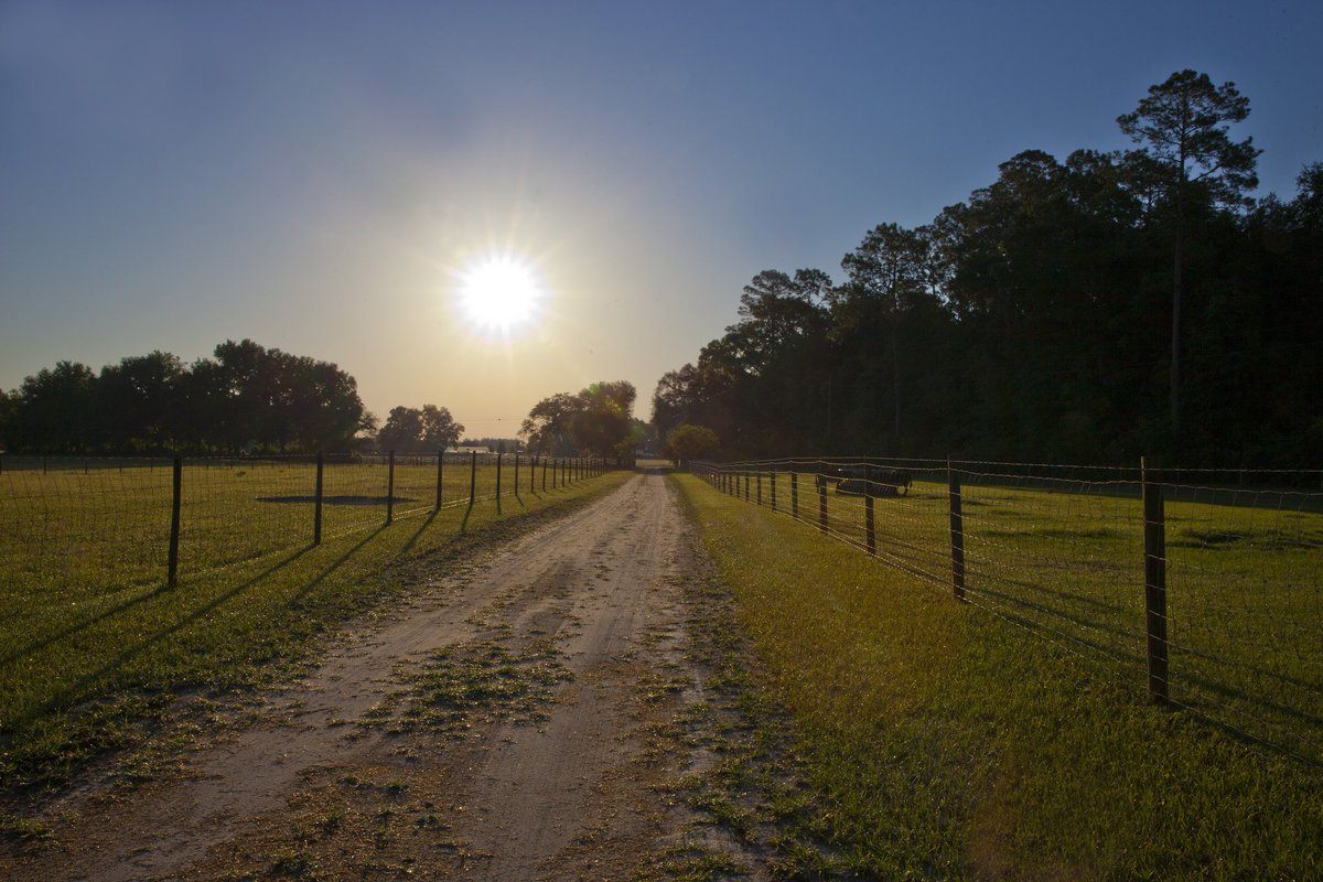 5 Florida Retreats on Working Farms and...