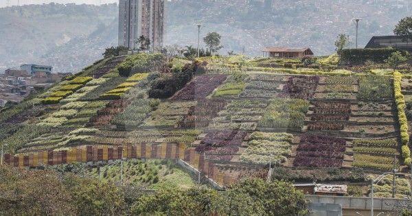 En Moravia nació la nueva Medellín https...