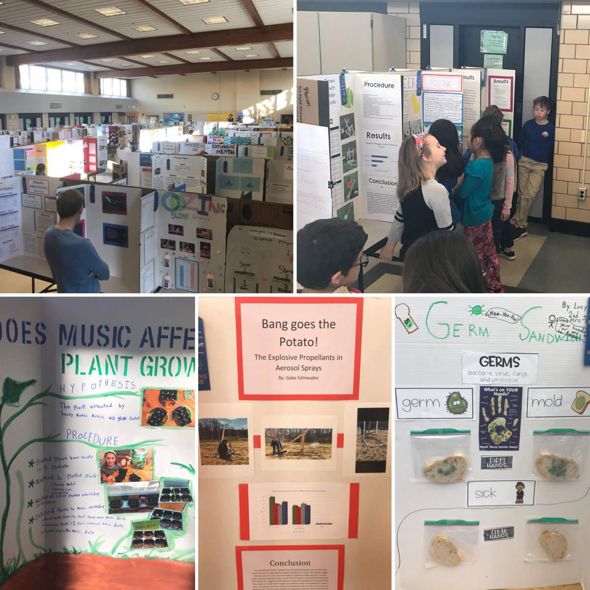Science fair projects everywhere! <a target='_blank' href='http://twitter.com/APSscience'>@APSscience</a> <a target='_blank' href='http://twitter.com/APSMath'>@APSMath</a> <a target='_blank' href='http://twitter.com/APSGifted'>@APSGifted</a> <a target='_blank' href='https://t.co/HqeaehwWze'>https://t.co/HqeaehwWze</a>