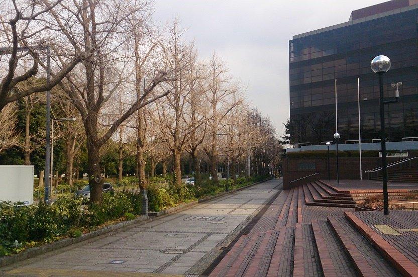 山下公園通り hashtag on Twitte...