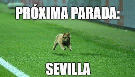 😸➡ @SevillaFC ⚽ https://t.co/AgWFM6h5MY