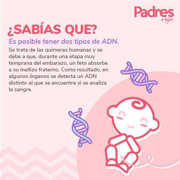#SabíasQue #eldato #datodeldía #curiosid...