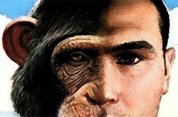 カラパイア : ヒトとチンパンジーのハイブリッド「ヒューマンジー」を作る技術はすでにある(米研究者) https://t.co/ZnCw5KrOHA