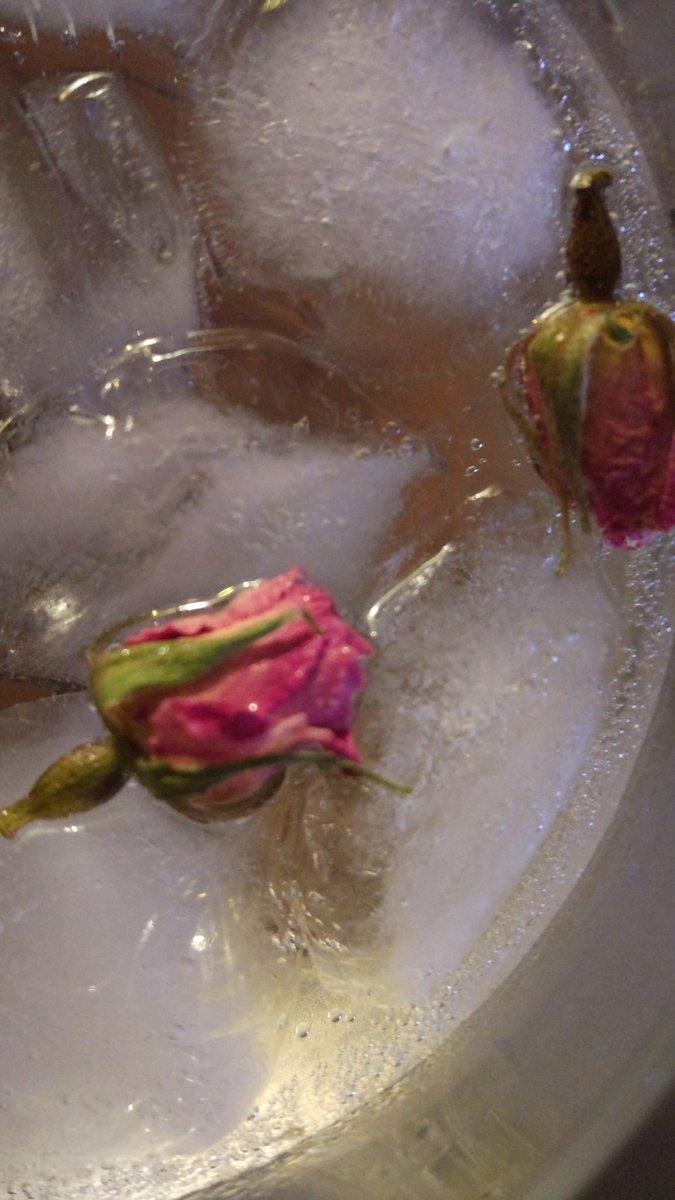 Unas rosas persas? #Viernes https://t.co...