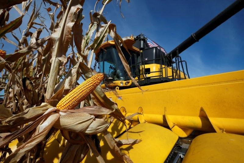 Corn-state senators seek Trump meeting as U.S. biofuel changes loom https://t.co/bLzcaGGEOg https://t.co/2KRo7l6OGE