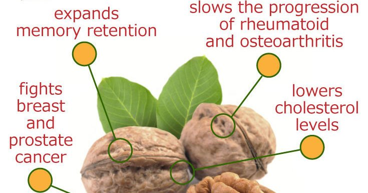 RT Walnuts are one of the best foods to help boost mental focus ➡ https://t.co/SMD2P8VRby https://t.co/BnlFEkwei0 #health #well
