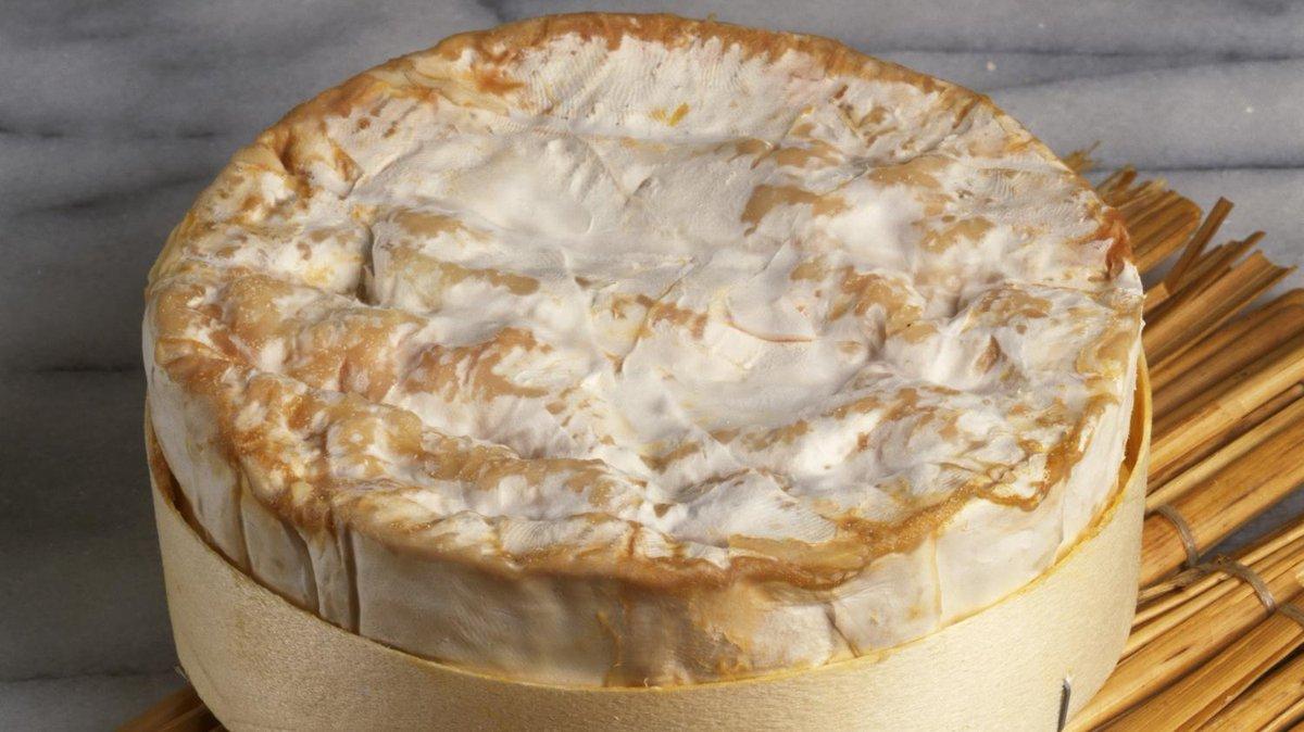 L'Extra, un camembert québécois a été sacré meilleur au monde. Ouais, ouais on est content pour eux... https://t.co/Ft2vzA93G4