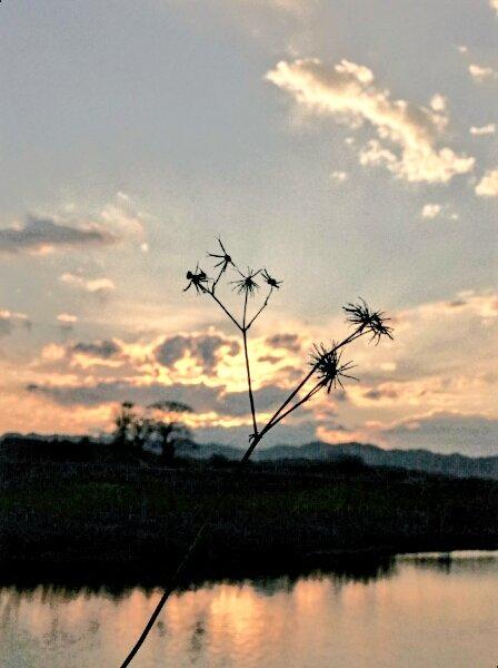 いつかの夕暮れ #photography #twilight #sunset #...