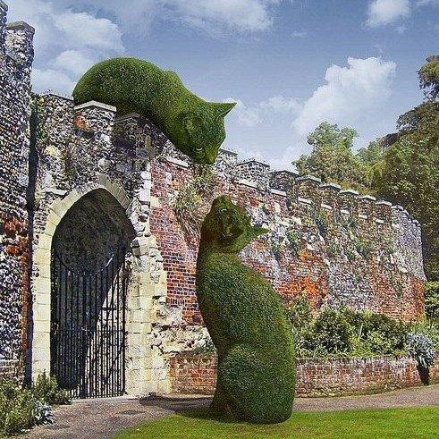 الحديقة السريالية Topiary Cat  يزمع Rich...