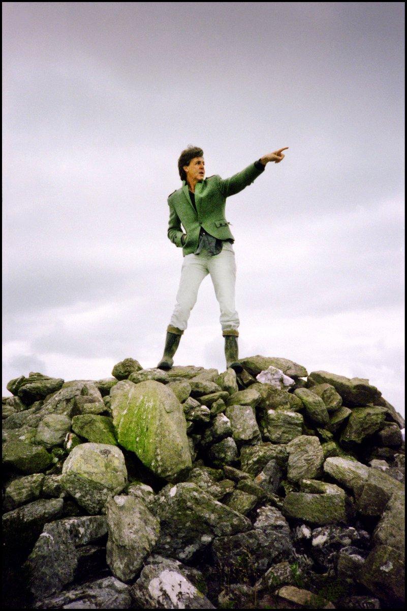 Go green on St Paddy's Day! #StPatricksDay