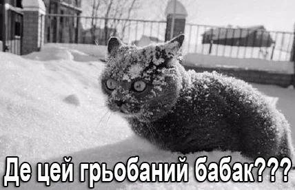 ДСНС попереджає українців про погіршення погодних умов: очікуються сильні снігопади і вітри - Цензор.НЕТ 9212