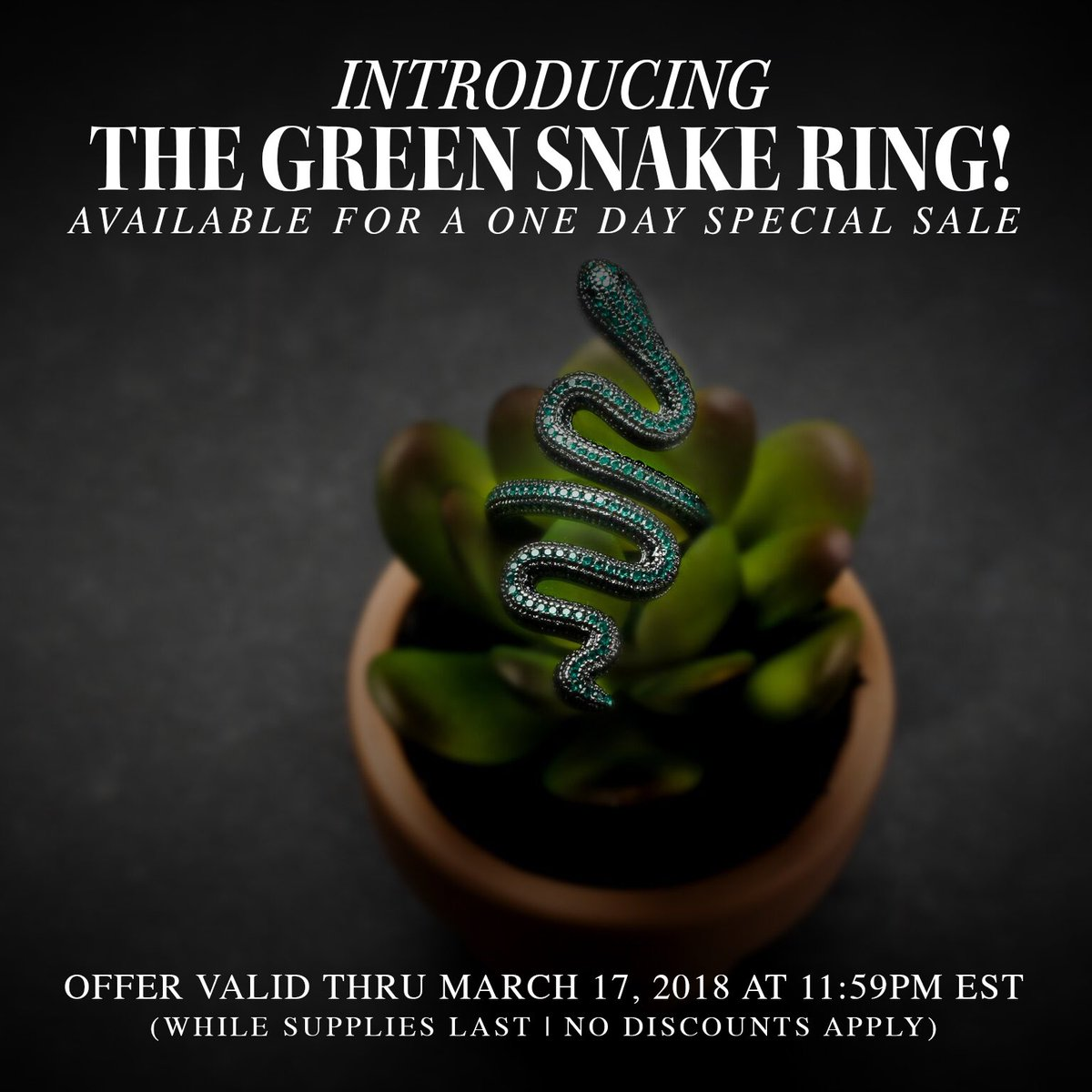 Call it what you want, but we're calling it a St. Patrick's Day One Day Special Sale! The new Green Snake Ring is available now until 11:59p EST today (while supplies last)   Shop here: https://t.co/4CNWjc0Tux