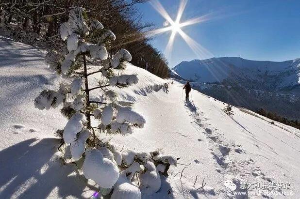 从北到南滑雪:意大利中部 Sciare da Nord a Sud: Italia Centrale. Spieghiamo l'Italia🇮🇹 degli sport invernali ai 🇨🇳 in vista delle Olimpiadi invernali di Pechino 2022. @ItalyMFA ⛷🇮🇹 mp.weixin.qq.com/s/FdCSB2PEG2IE… 🇮🇹⛷ @ItalyMFA