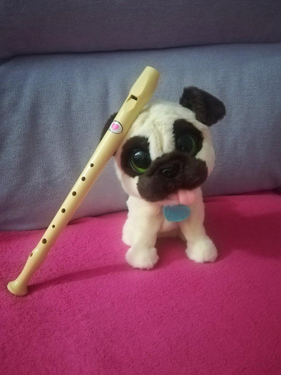 Tengo este perro flauta que ni es de pod...