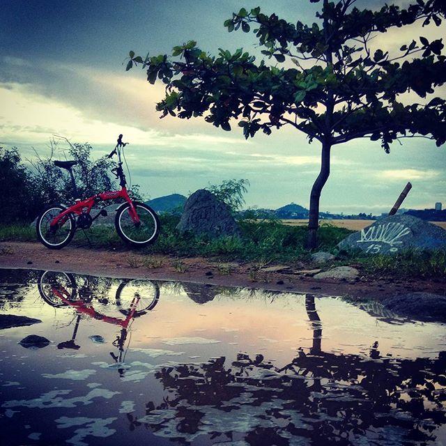 #colorful #reflection #sunset #nature #photomafia #tree bike #cloudporn #skyporn #ig_worldclub #ig_espiritosanto #igersbrasil #ig_brazil_ #bluesky #landscape #capixabissimo #bestnatureshots #all_shots http://ift.tt/2pkIaLx pic.twitter.com/ivR6D1L89G