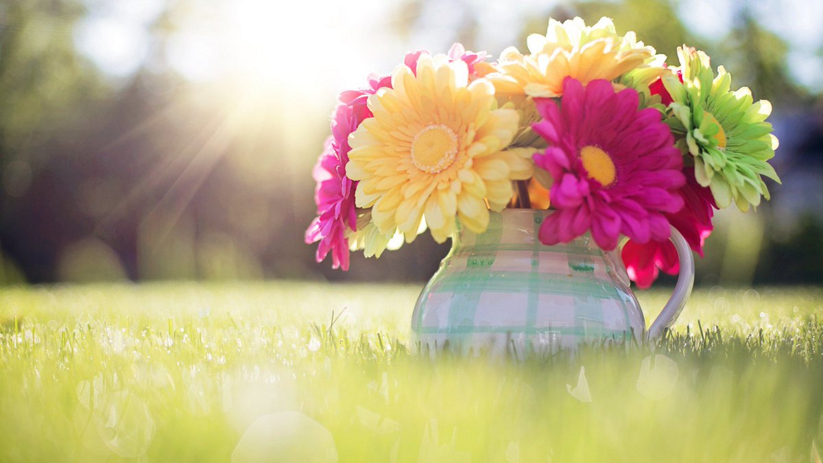 Live Wallpaper Hd On Twitter Free Download Spring Flowers Hd