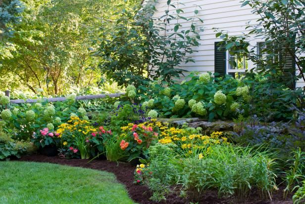 Which Mulch is Best for Your Yard? https...