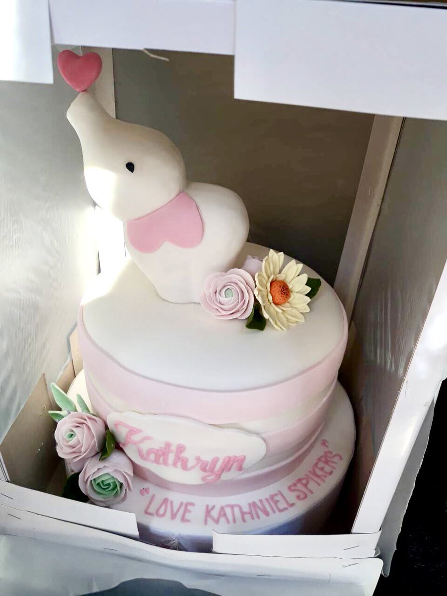 KATHNIEL SPIKERS on Twitter Our elephant birthday cake for