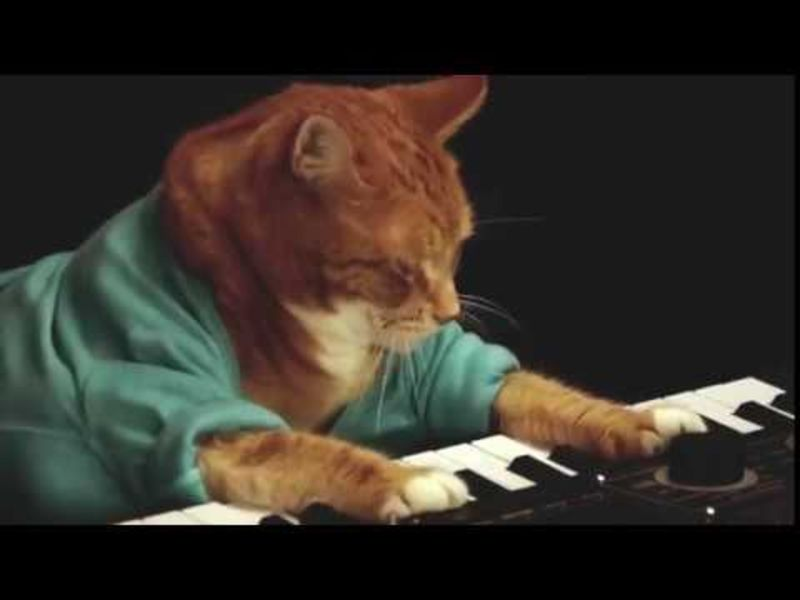 Saturday Night Social: RIP, Keyboard Cat https://t.co/JelO6aDKwM