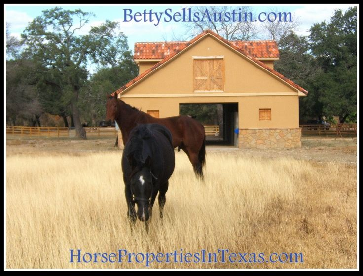#Austin #For #Horse #In #Properties #Sale #Texas #homedecor Please RT: https://t.co/iLU2osCZ9d https://t.co/3JpT33miDR