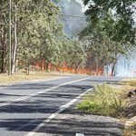 Image for the Tweet beginning: Bushfire burns out of control