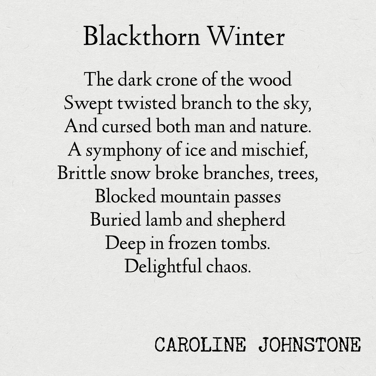 Blackthorn Winter #snowday #poem