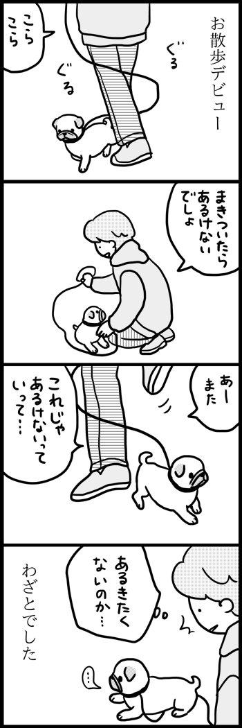 子犬時代 https://t.co/GStHuGnJXy
