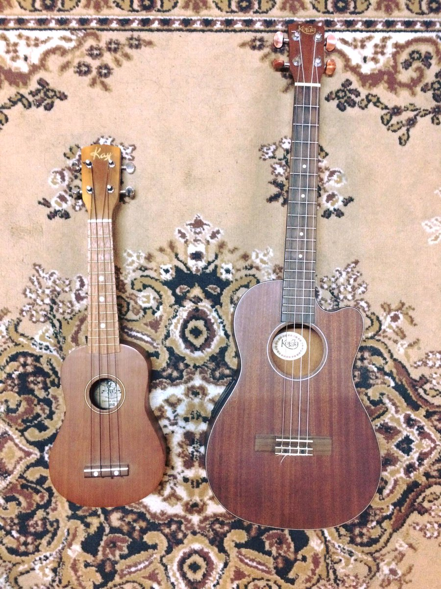 #Aloha! These #Ukuleles are ready for some exotic picking and strumming at @Studio65Berlin . Even though the #soprano is a #Kay from #Canada and the #baritone is a #Korala from #Malaysia, they do transport the authentic #Tiki vibe.#ukulele #hawaii #sopranoukulele #baritoneukulele <br>http://pic.twitter.com/3kSpKv5Ogp