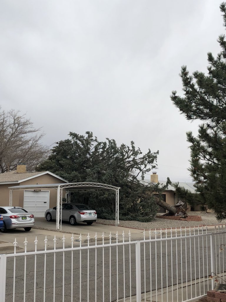 These winds are no joke #NewMexico https...