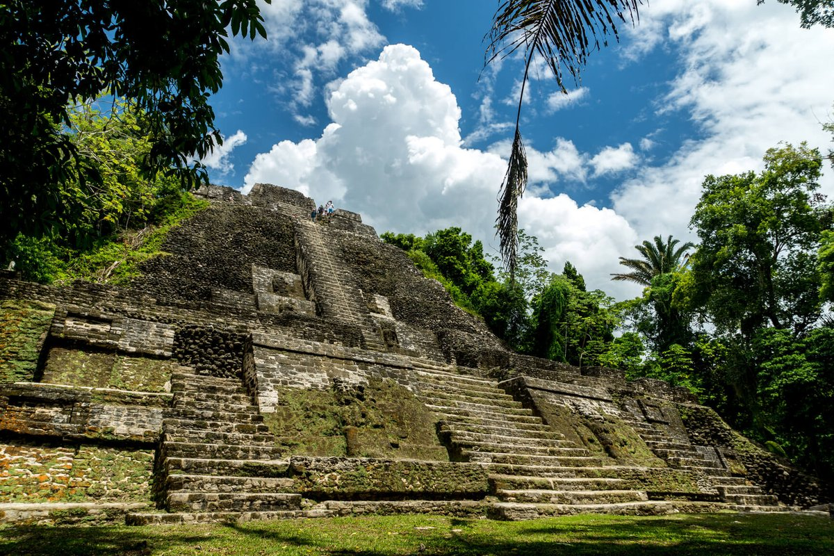 test Twitter Media - Non-stop from Miami to Belize for only $58 one-way (or $178 roundtrip) with @AmericanAir.  https://t.co/Z5nta69Jz7 https://t.co/bMBfJg9frG