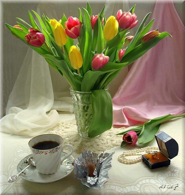 доброе утро фото тюльпаны выяснили, что
