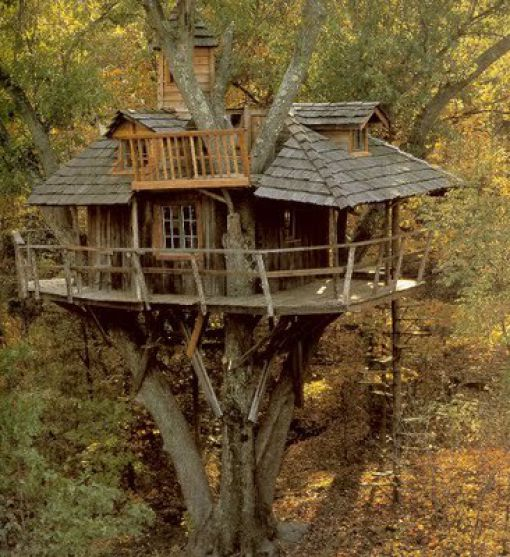 Tree House https://t.co/687BYXg6d3