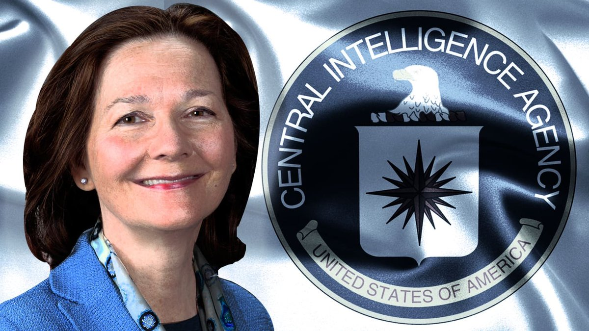 "Senator Rand Paul said he'll ""Filibuster"" the confirmation of Gina Haspel for CIA Director citing she's too tough. Really? I'll bet Rand would have been happy to have her toughness over his house the day his neighbor paid him an unannounced visit‼️👊🏻"