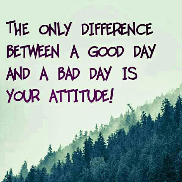 Good morning all! You're #attitude can change you day! Enjoy everyone ✌🏼